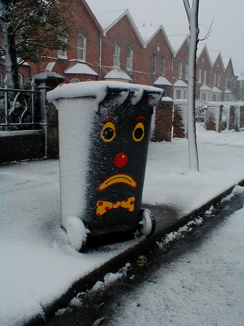 Snow Day 1 - Saint Lawrence Road Bin